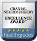 Cranial Neurosurgery Excellence Award
